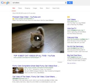 cat-videos---Google-serp-desktop